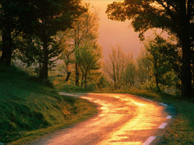 10 beautiful roads (10) 8