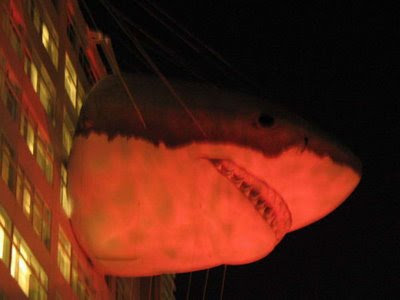 Discovery Building - Shark Week (11) 9
