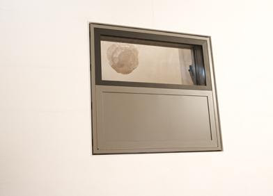 Bloomframe - Innovative Window (3) 2