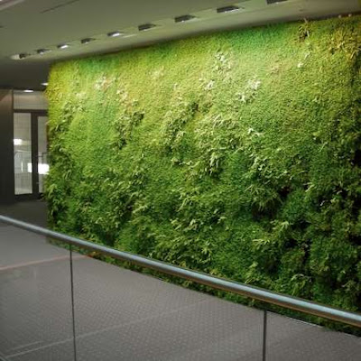 Green wall - Indoor Landscaping (5) 2