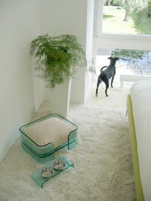 Creative and Modern Furniture for Pets (8) 1