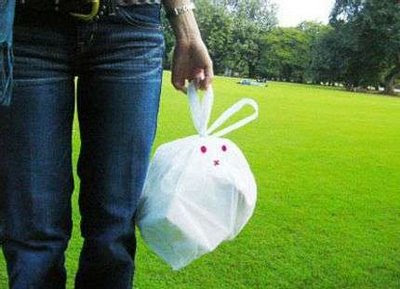Rabbit Bag (4) 1