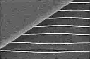 World's Smallest Harp