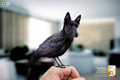 10 Creative Pet Food Advertisements (11) 2