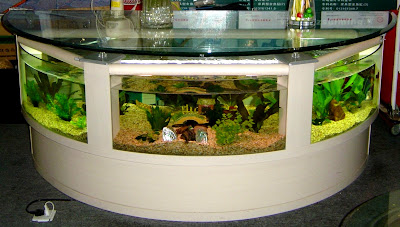 Cool Aquariums and Unusual Fish Tanks Designs (50) 35