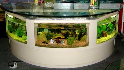 22 Cool Aquariums And Unusual Fish Tanks Designs Part 3