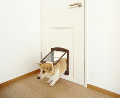 Dog Friendly Home Designs(18) 7