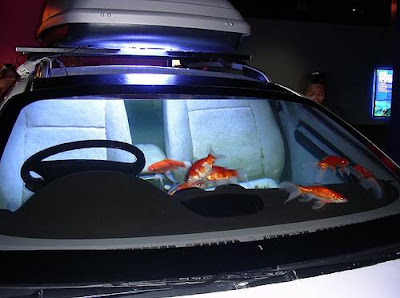 Unusual Aquariums and Creative Fish Tanks Designs (9) 4