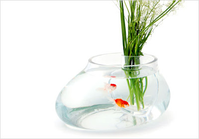 14 Creative and Cool Fishbowl Designs (14) 5