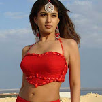 Malllu glamour actress Nayantara Photo Shoot