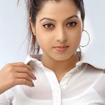 Hot South Indian Actress Keerthi Chawla Sexy Photo Shoots