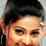 South Indian Hot Actress Sneha Exclusive Photo Shoot