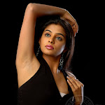 South Indian Actress Priyamani Wallpapers,profile,biography,filmography