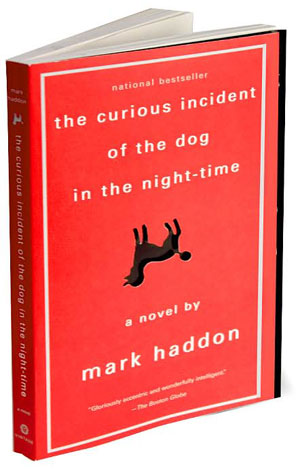 Dog in the night autism book