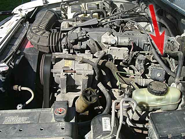 1993 Ford Ranger Engine Ford Ranger Engine Diagram 1994 Ford Ranger 2