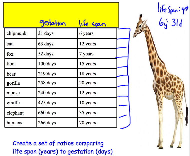 Off The Hypotenuse: Teaching Ratios: Gestation to Life Span