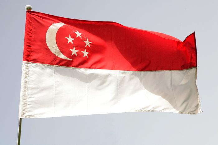 drapeau de singapour