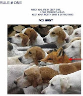 Be like the fox in the pack of hounds