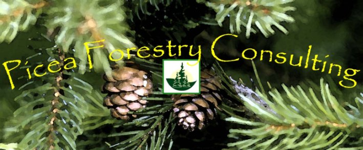 Picea Forestry Consulting