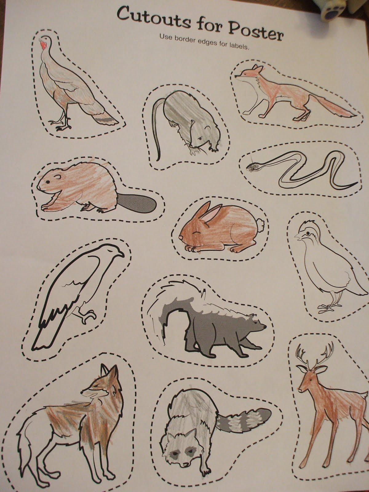Animal Worksheet New 163 Animal Habitat Worksheets For