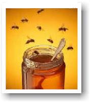 Panal con miel en farmacias y farmaceúticos