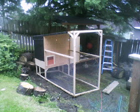 Alaskan Chickens Building Our Coop
