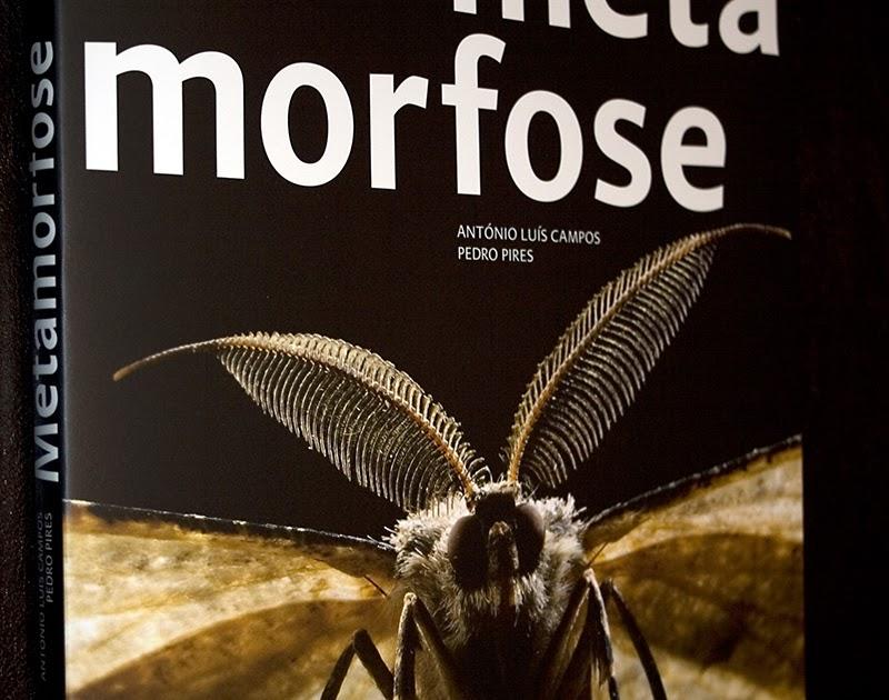metamorfose: Livro METAMORFOSE