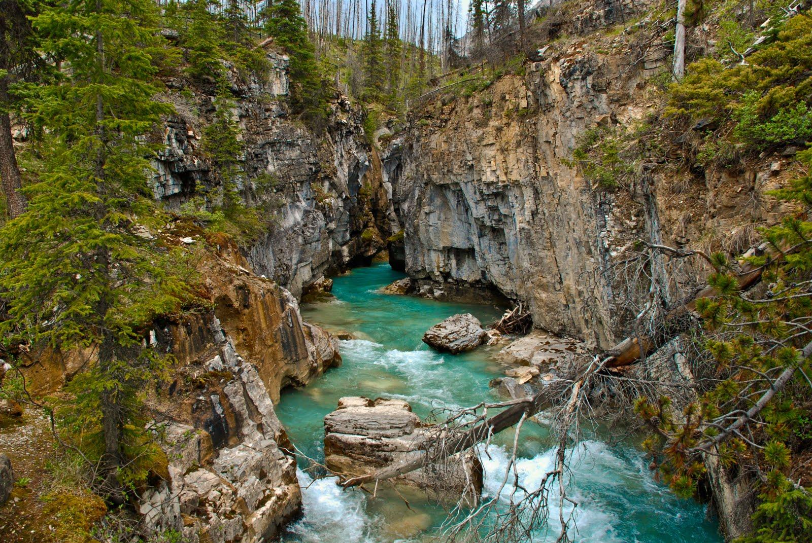 John Andrews Photography Alberta And British Columbia
