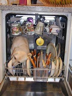 Dishwasher safe 1