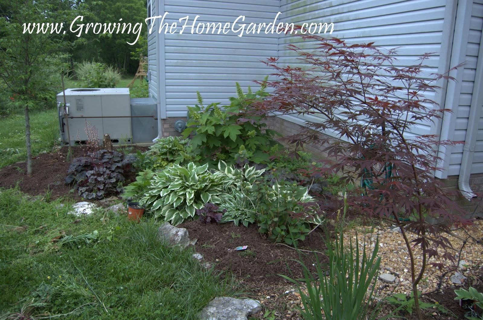 Landscape corner of home home design inside for Backyard patio landscaping ideas