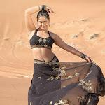 Spicy Actress Farzana