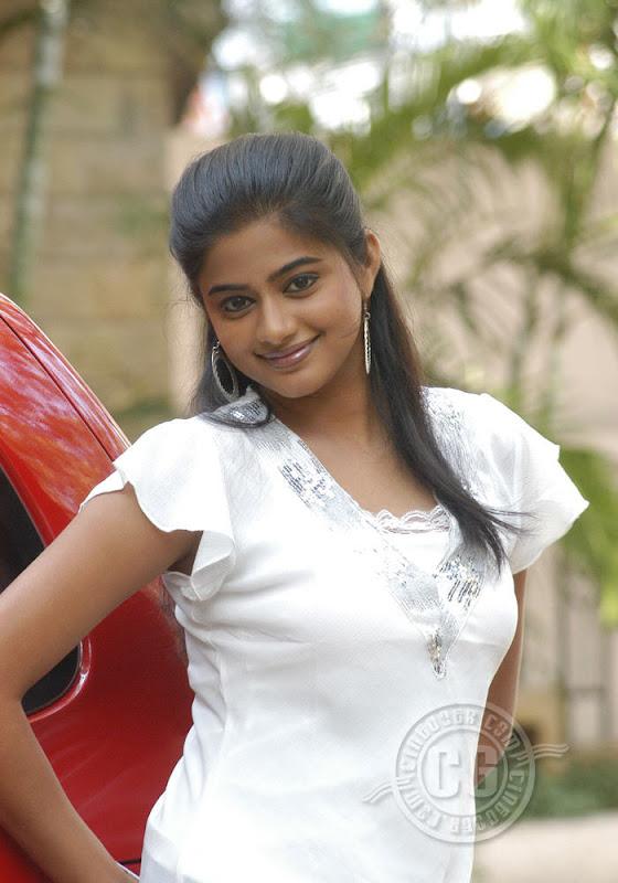 South Indian Cinema Actress Malayalam Nude Actress Priyamani-8864
