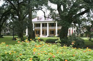 Pine Mountain Review: Louisiana, The Creole, Cajun, and ...
