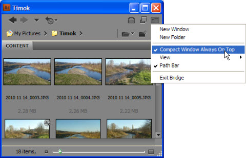 Set Adobe Bridge window to stay always on top of all open windows