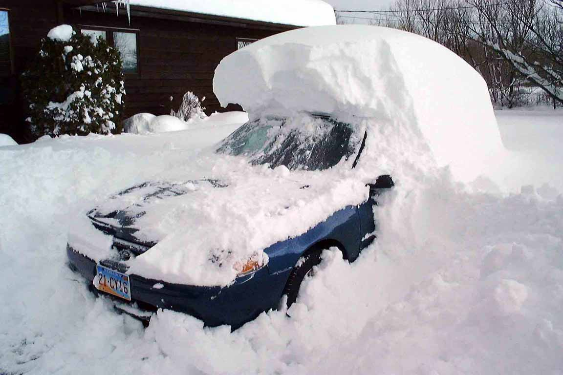 Snow+blizzard+2011.jpg