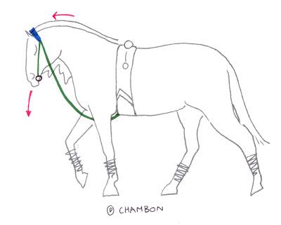 Encyclopedia Equestria September 2007