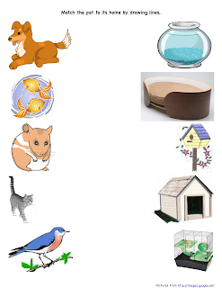 preschool is fun planning activities pets home match. Black Bedroom Furniture Sets. Home Design Ideas