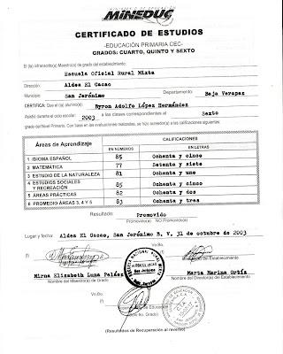 Curriculum Vitae Diplomas Obtenidos