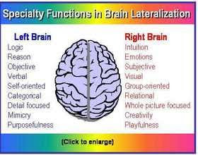 Brain Organization and Learning - Mind42