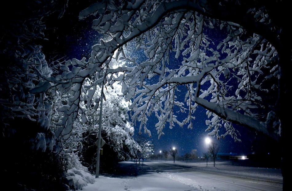 Art Of Nature: Christmas Snowstorm - 2010 - Va Beach, VA