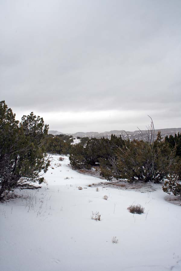Snow in New Mexico- Karina Allrich