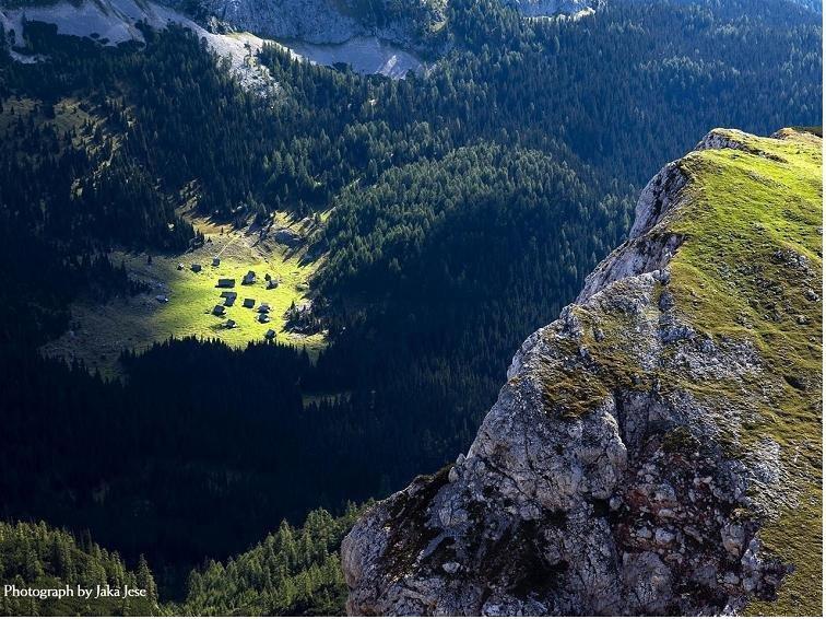 WORLD NEWS FORUM: [www.keralites.net] Wonderful Nature ...