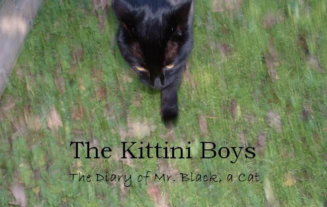 The Kittini Boys