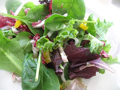 Mixed Green and Radicchio Salad with Balsamic Rosemary Dressing