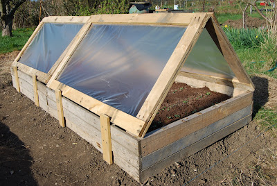 Cold frame made from recycled pallets