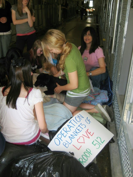 GIRL SCOUT TROOP VISIT CASTAIC SHELTER