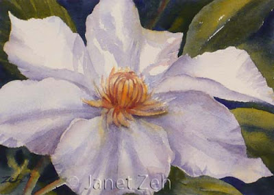 White Clematis Flower watercolor
