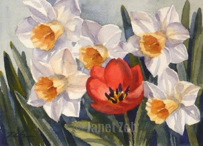 Red Tulip and Daffodils watercolor painting