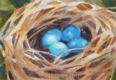 Bird's Nest and eggs watercolor painting