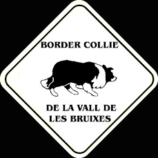 Criador recomendado: Border Collies y Shetland Sheepdog